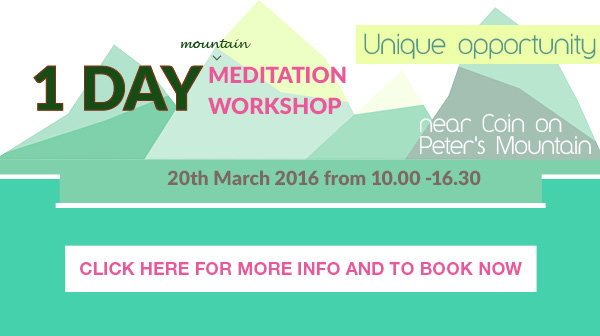 1 Day Meditation Workshop